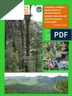 Informe ICC EER Sierra Parraxqun