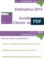 Powerpoint - Estimativa Inca 2014
