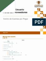 Manual Usuario codelco