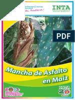 Brochure Mancha de Asfalto 2013