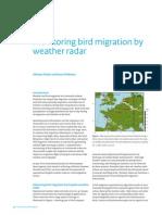 Bird Detection w Radar