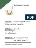 Consignas Practica 1 (1)