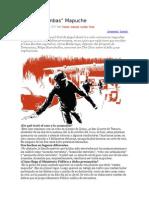 El caso bombas mapuche.doc