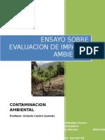 Ensayo Sobre Evaluacion de Impacto Ambiental