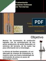 Presentacion AIPM