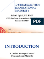 PMM07 - A Unified Strategic View of Organizational Maturity