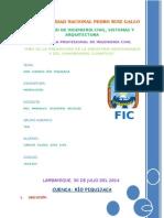 INFORME DE HIDROLOGÍA.docx
