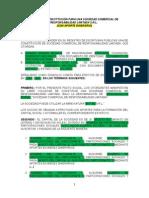Modelo de Constitución Para Una Sociedad Comercial de Responsabilidad Limitada s