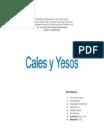 cales y yesos informe.docx
