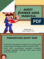 Audit Sumber Daya Manusia.ppt