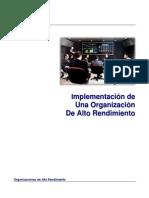 Implementacion Organizacion Alto Rendimiento