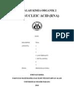 makalah rna kimia organik
