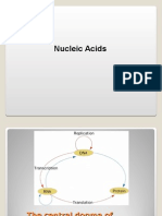 Nucleic Acids -Evs