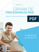 Programa de Profesionales web
