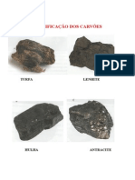 evolução carvão