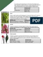 Medicinal Plants v2