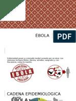 Ébola hbhbhdwjewjdewnjedwnjewdjnewdjnwejenh