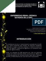 EXPO NEFRO (Enfermedad Renal Cronica) Y ESTADIOS).pptx