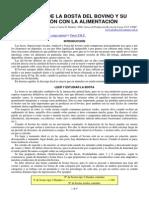 Heces Del Bovino y Relacion Con La Alimentacion(1)