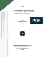 ubi jalar karlen 2010.pdf