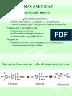 tirosina generalidades