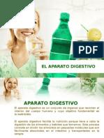 EL APARATO DIGESTIVO diapositiva.pptx