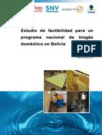 Informe Final Bolivia Web 1