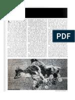 Sample Magazine Article - Rat Race - Incite Magazine