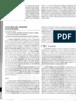 Sistema-respiratorio-tortora1.pdf
