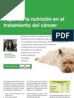 AV_24_Papel de la nutrición en el tratamiento del cáncer