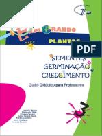 sementesgerminacao-110504035823-phpapp02