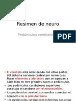 Resimen de Neuro