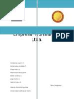 analisis interno organizacion ejemplo