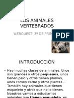 losanimalesvertebrados-121030144234-phpapp02.ppt