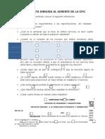 Introduccion Formatos
