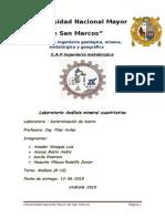 Informe  analisis mineral cuantitativo (Determinacion de Hierro) - Chacala - UNMSM