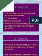 Sx Cerebeloso
