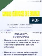Dr. Guillermo l. Carpio Pertierra