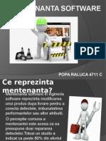 Mentenanta Software 1