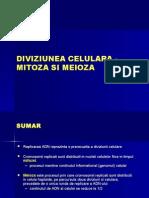 mitoza_meioza(3)