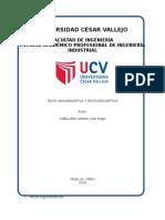 Trabajo - Texto argumentativo y descriptivo.docx