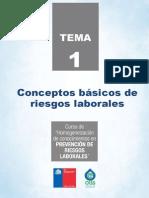 TEMA1 Conceptos Basicos de Riesgos Laborales 1