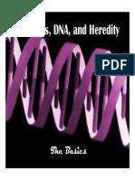 Heredity BasicsPresentation