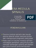 Cedera Medaula Spinalis