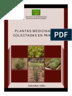 Plantas Medicinales Colectadas en Panama