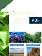 keanekaragaman ekosistem SMA