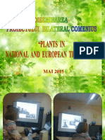 """Diseminare PROIECT BILATERAL COMENIUS """"PLANTS IN NATIONAL AND EUROPEAN TRADITIONS"""""""