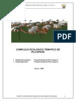 PIP COMPLEJO ECOLOLOGICO TEMATICO DE PILCOPATA1.doc