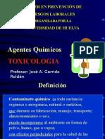 p 4 Toxicologia 22