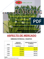 4110028 Diapositivas Plan de Negocio Gladiolos